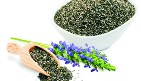 chia (Salvia hispanica) magvak